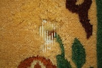Моль в шерстяном ковре