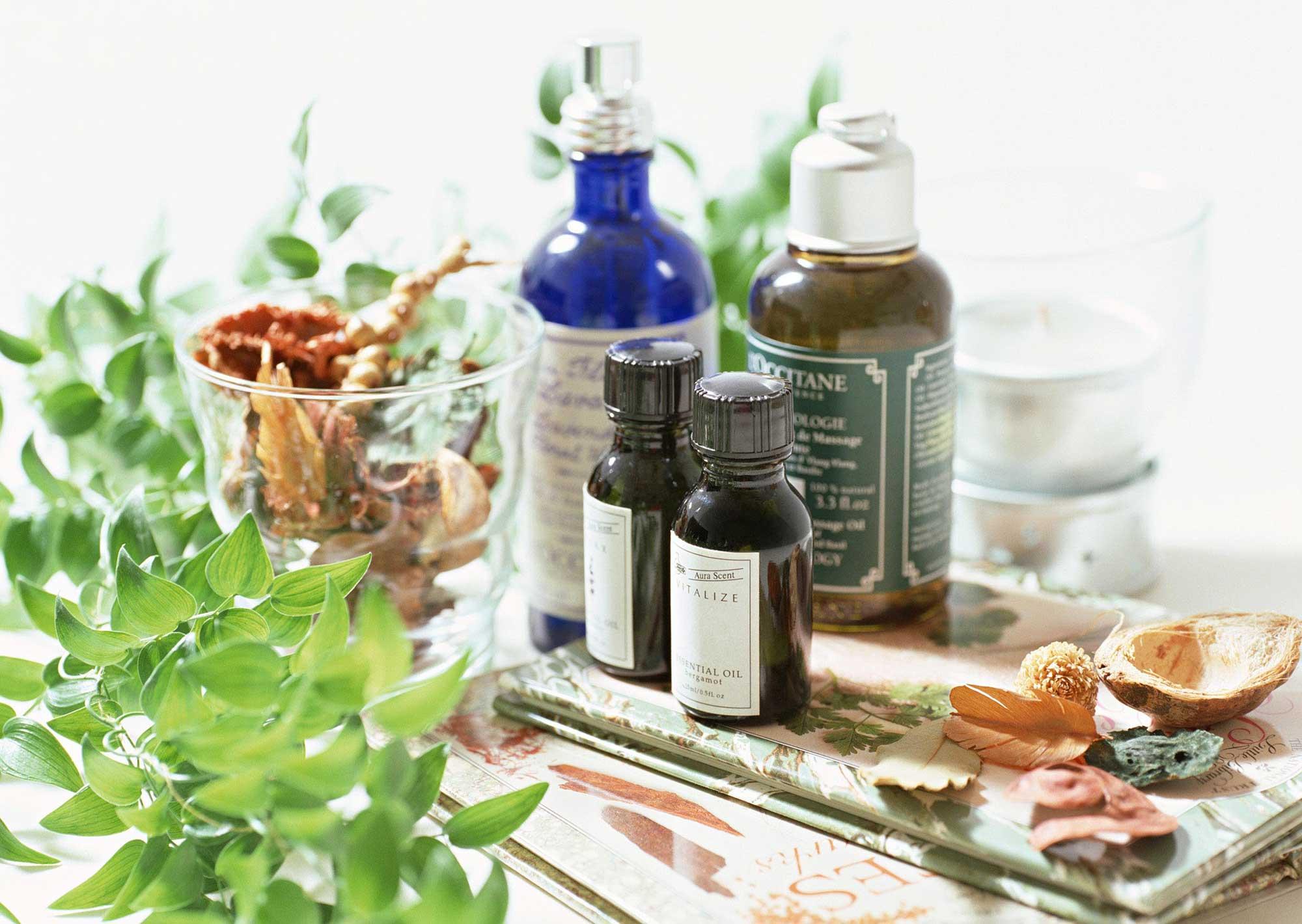 Эфирные масла против блох: эффективность и целесообразность использования