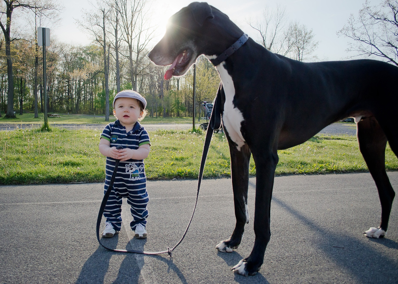 Большой и маленький фото для детей