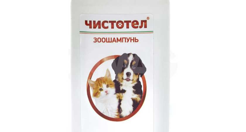 Шампунь для щенков от блох – надежное средство проверенное неоднократно