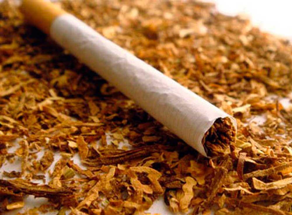табак как средство от моли