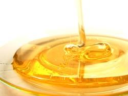 Ловушка для блох из меда