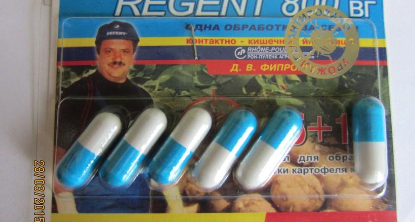 Регент от тараканов – секрет эффективности современного препарата