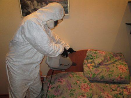Дезинфекция от клопов в квартире