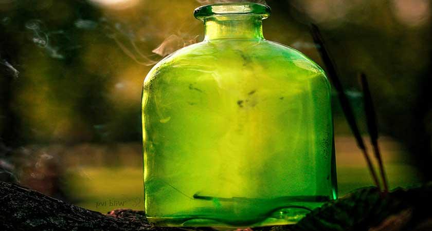 Чемеричная вода – старое средство в новых условиях