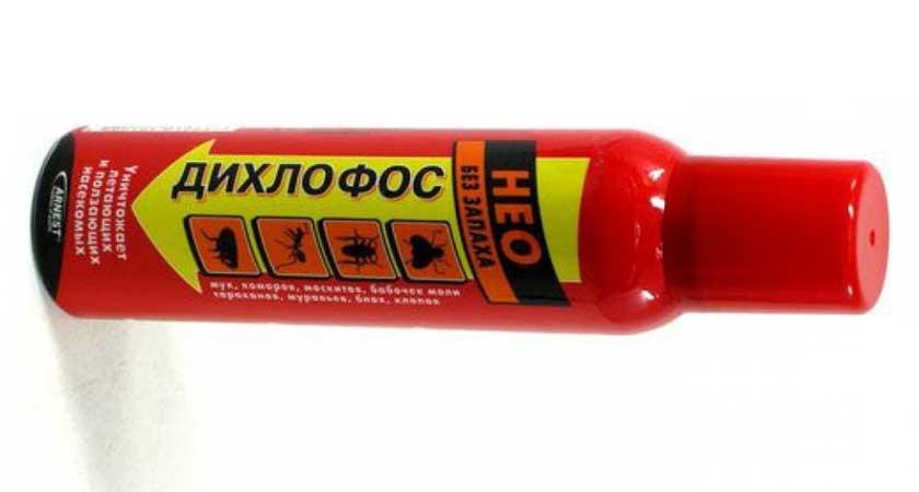 Дихлофос Нео без запаха от клопов – новое средство со старой эффективностью