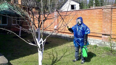 обработка плодовых деревьев Алатаром