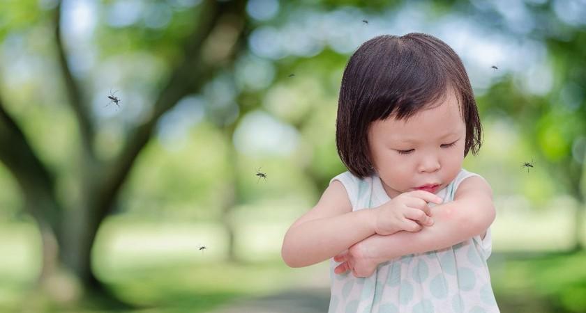 Укусы комара у ребенка: эффективные методы обработки