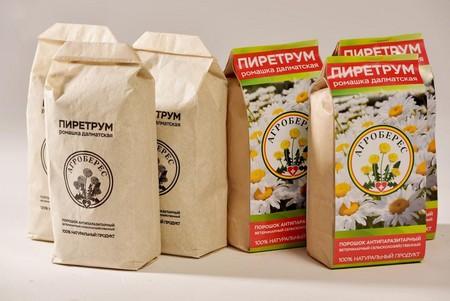 Трава пиретрума от клопов используется для профилактики заражения
